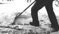 Wir übernehmen die Schneeräumung und Winterdienst, sowie Gartenarbeiten, das Rasenmähen und den Baumschnitt